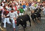 running from bulls